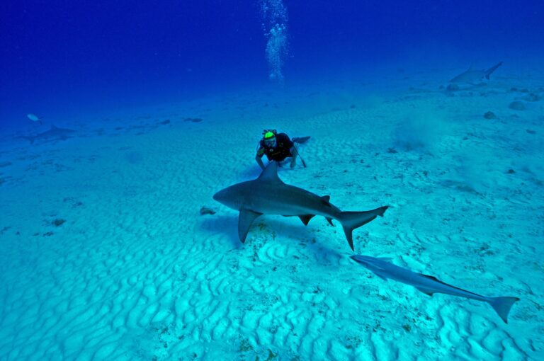 best scuba-diving sites in Mexico
