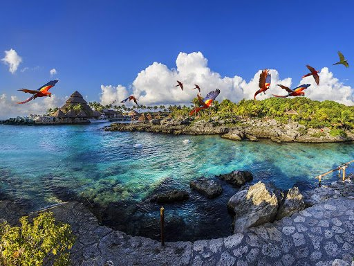 Xcaret, all you need to know about the re-opening after covid-19 pandemic