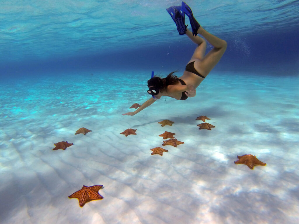 El Cielo - Best snorkeling in Cozumel- Mexico Travel Guide BLOG