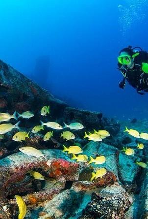 Scuba diving Puerto Morelos