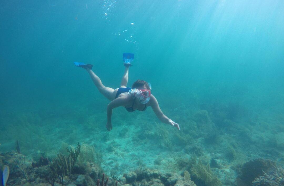 Puerto Morelos Reef Snorkeling