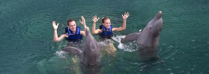 delfinus Puerto Morelos Mexico