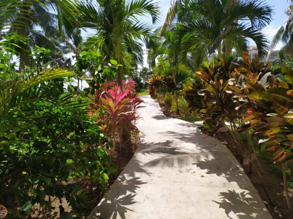 Beach Residences Puerto Morelos Suites