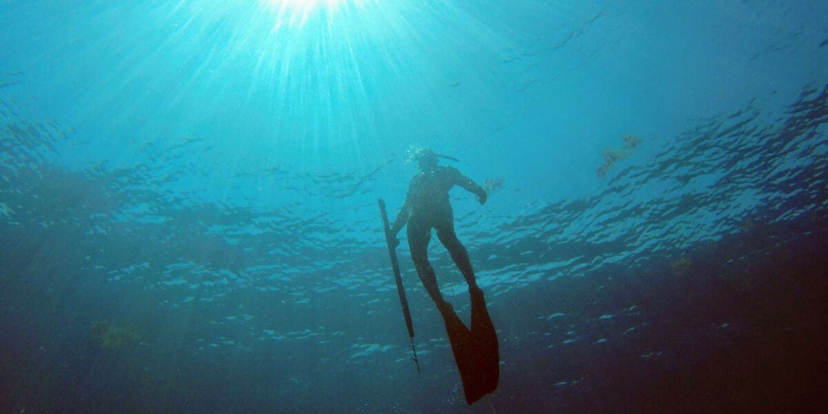Spearfishing Cancun