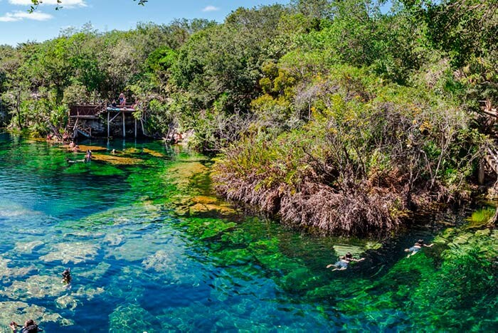 Guide to Explore the Cenotes in and Around Tulum