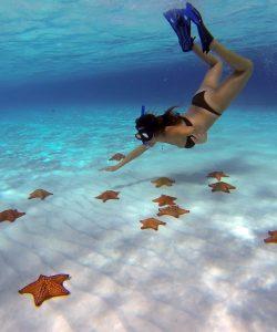El Cielo - Best snorkeling in Cozumel- Mexico Travel Guide BLOG