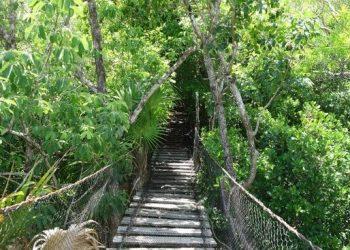 Jardin Botanico Puerto Morelos