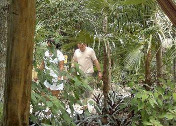 jungle spa Puerto Morelos