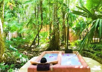 Jungle spa Puerto Morelos